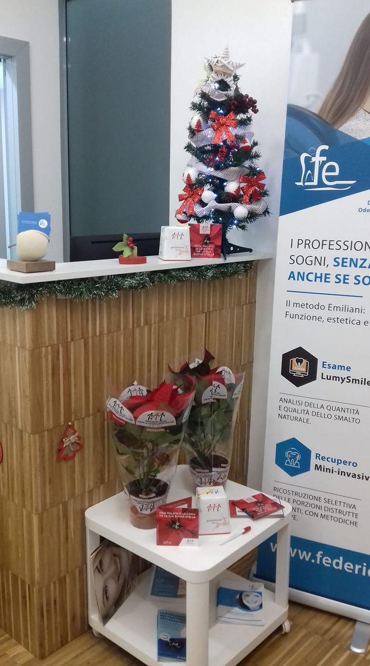 Ultime due Stelle di Natale rimaste! Di cuore, GRAZIE a tutti i nostri pazienti che ci hanno aiutato ad aiutare l'AIL, perché aiutare gli altri fa bene al cuore! <3 #StudioEmiliani #ScegliilTOP #Sempreconilsorriso