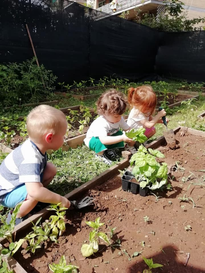 Le abilità agresti dei nostri bambini nutrono con amore l'orto didattico dei Giardini di Zeus.