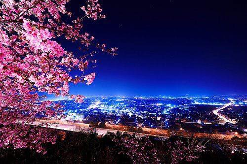 A Tokyo la sera e la notte, cieli e luci offrono una continua fioritura di magie.  Buona serata a tutti voi !