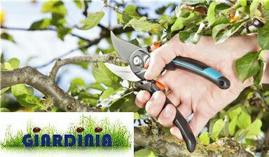 Gardena 8905-20 Leggere, regolabili e resistenti🌼